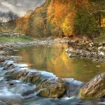 Autumn in Mountains: Carpathians