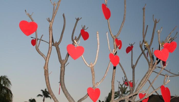 Valentinesdaytree-700x400