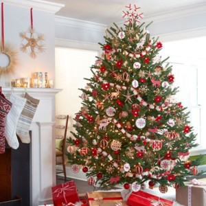 during the whole holiday season the christmas tree plays the main role in your home so it would be properly decorated but have you ever thought about the - Origin Of Christmas Trees